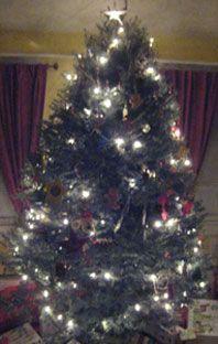 Christmas Tree_Main.jpg
