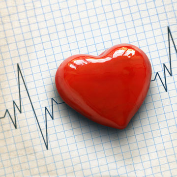 heart-on-top-of-EKG-results_600x600_shutterstock_185621108.jpg