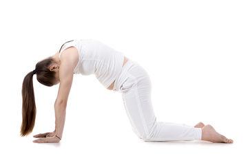 CatCow: The Labor Prep Yoga Move