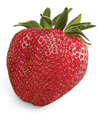 strawberries-198w_0.jpg