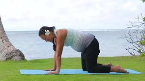 Prenatal Yoga Cow Pose
