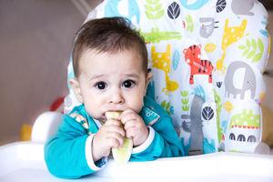 82d3cffca Baby Feeding