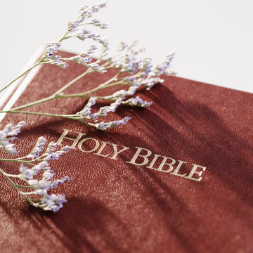 holy-bible-as-source-of-baby-names