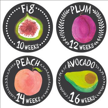 Belly stickers - pregnancy week by week
