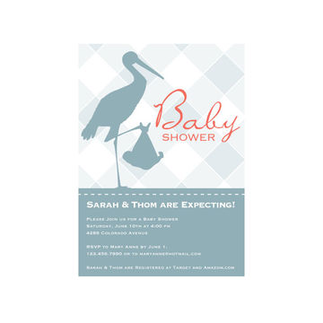 Traditional baby shower invites with a modern twist fit pregnancy stork bringing a baby filmwisefo