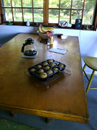 blueberry_muffins_in_maine_at_0.jpg