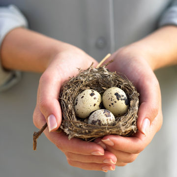 woman-holding-nest-with-eggs_700x700_Getty-85627722.jpg