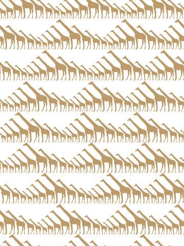 Golden Hour Giraffe Wallpaper