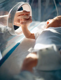 incubator-at_0.jpg