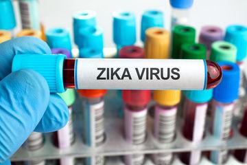 New Zika Study