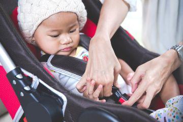 Car Seat and Chemical Exposure