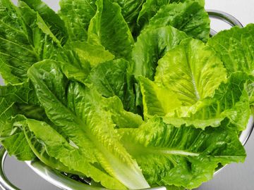 romaine lettuce listeria risk