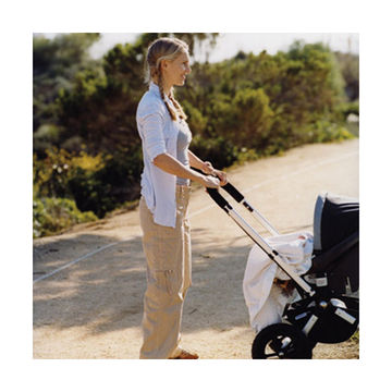 the stroller workout  fit pregnancy and baby
